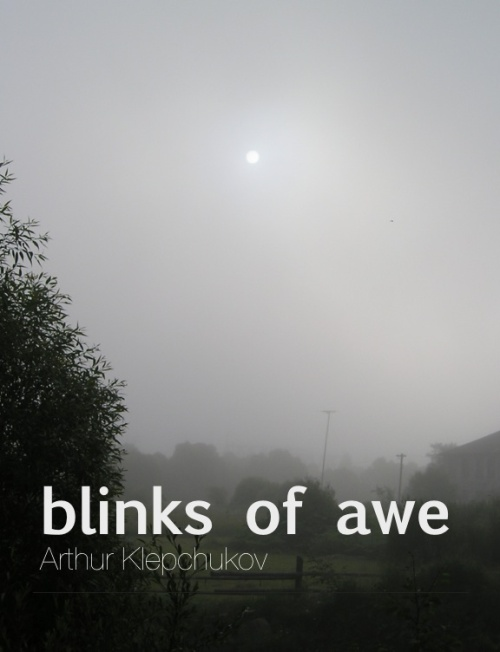 blinks of awe cover